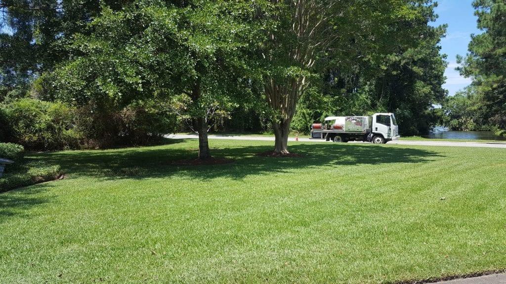 Top Notch Lawn Fertilizer Service In Mount Pleasant Sc