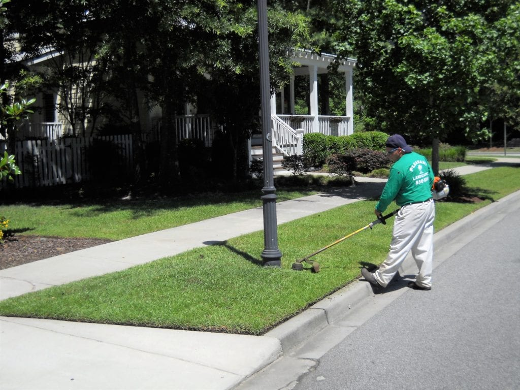 lawn mowing service in Mt Pleasant, SC
