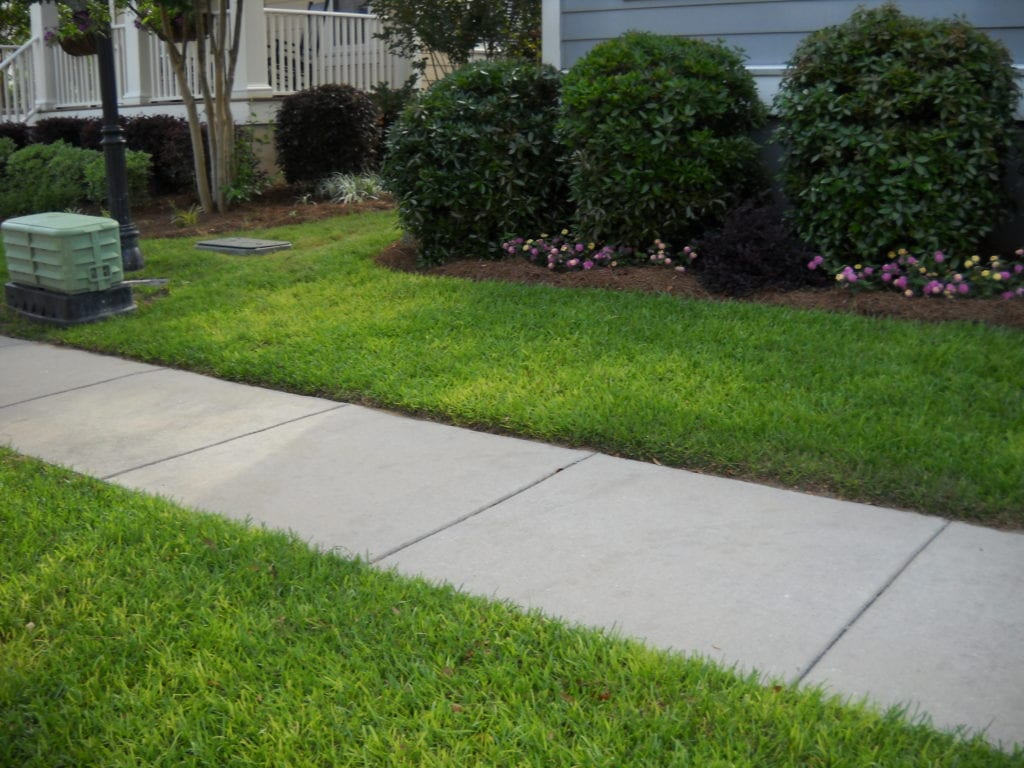 Skilled Mount Pleasant Sc Sod Installation Services