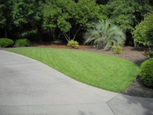 Mount Pleasant, South Carolina drainage solutions
